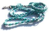 Viva Nature Handgemachtes Hunde-Halsband MIT Leine im Set/verstellbar\ Paracord-PP-Flechtleine/Geflochten / Hund (Türkis Violett)
