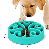 JASGOOD Slow Feeder Dog Bowl New Arriving Fun Feeder Slow Feeding Interactive Bloat