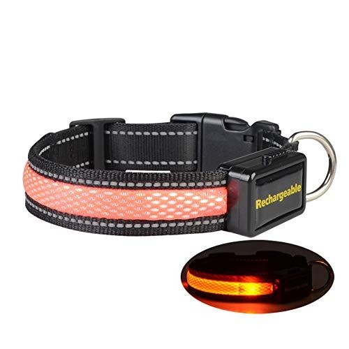 Alaof LED Hundehalsband Halsband,Hundehalsbänder Halsband Leuchthalsband Hunde Halsband Sicherheit USB Wiederaufladbar Länge K Einstellbar Haustier Sicherheit Kragen,Orange,S