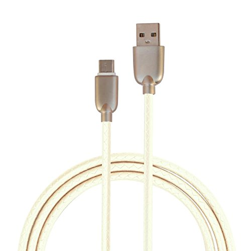 m-fit USB Type C Reversible Data Cable (100cm)