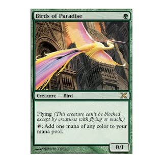 Magic: the Gathering - Birds of Paradise (252/383) - Tenth Edition - Foil by Wizards of the Coast