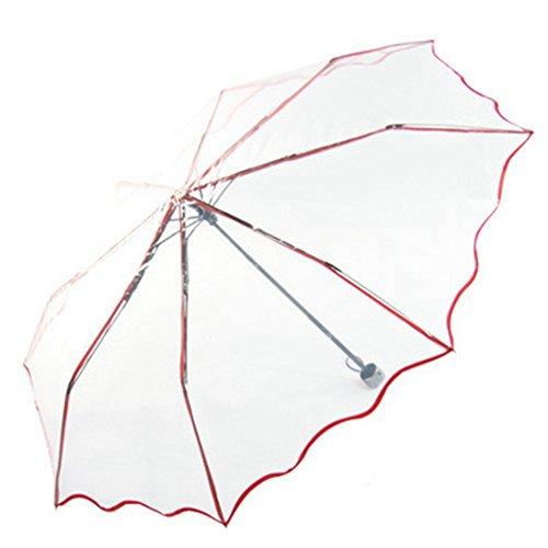 dayan-creative-folding-umbrella-transparente-manner-frauen-universal-kleine-fresh-compact-falten-reg