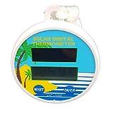 Weigand Solar Thermometer mit Digitalanzeige I Solar I Solarbetrieb | Pool I Schwimmbad I Zubehör