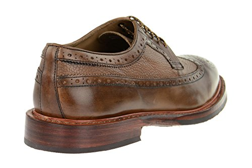 Brogue Uomo Bros 013 Gordon Paul Marrone 203 ZwR1q4