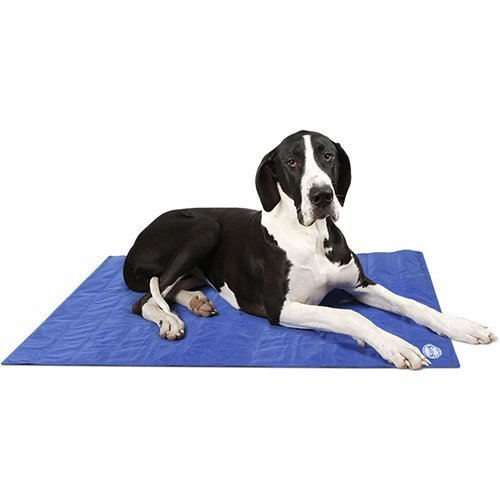 Scruffs self-Cooling Alfombrilla, extra grande