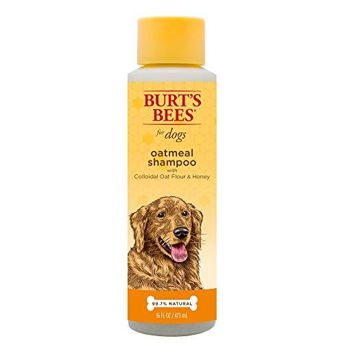 Burt 's Bees Oatmeal Hund Shampoo,
