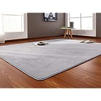 Aomerrt 160x200cm Short-haired coral velvet carpet living room floor mat coffee table mat bedroom blanket bed rug floor mat door cushion,gary,100x200cm