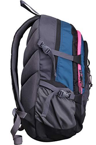 Best college bags for girl in flipkart in India 2020 F Gear Defender V2 45 Liters (Navy Blue, Pink) Rucksack Image 3