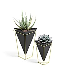 Umbra Trigg Tabletop Planter & Geometric Storage Vessel, Great for Displaying Small Plants, Pens and Pencils, Makeup Accessories and More (Set of 2) 1004372-1137