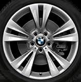 Original BMW Alufelge X3 F25 Doppelspeiche 309 in 19 Zoll für vorne