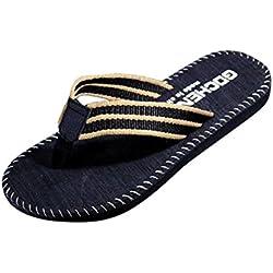 Herren Sommer Flip Flops Xinan Streifen Schuhe Sandalen Slipper (40, Schwarz)