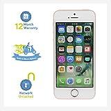 """Apple iPhone SE 10,2 cm (4"""") 32 GB SIM singola 4G Oro rosa"""