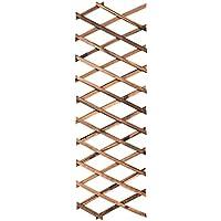 N Enrejados de jardín Enredaderas trepadoras de Plantas expandibles Soporte para cercas enrejadas (200cm*30cm)