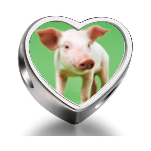 rarelove-sterling-silver-pig-heart-photo-charm-beads