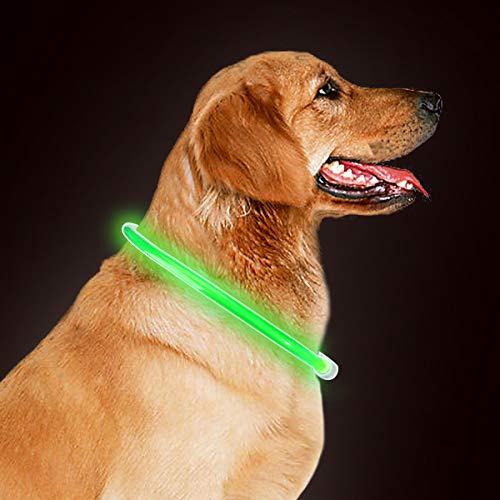 takyu Led Halsband für Hunde Sicherheit Leuchtender Hundehalsband, 70cm universell kürzbar, wiederaufladbar über USB Kabel Grün (Sicherheit Hund Halsband)