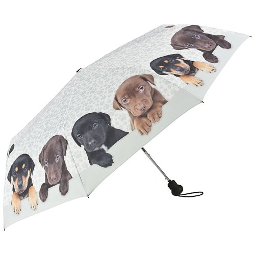 VON LILIENFELD Regenschirm Taschenschirm Automatik Damen Hund Motiv Welpenquartett