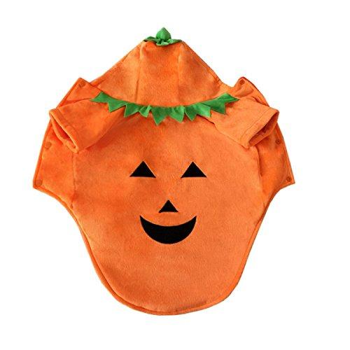 d Kleidung Lächelndes Gesicht Teufel Kürbis Verklärung Katze Haustier Kleid,2XL (Einfach, Halloween-katze Gesicht)