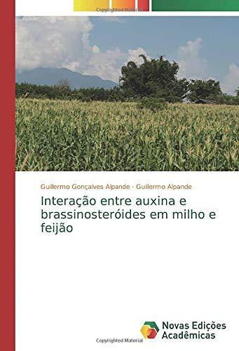Interação entre auxina e brassinosteróides em milho e feijão