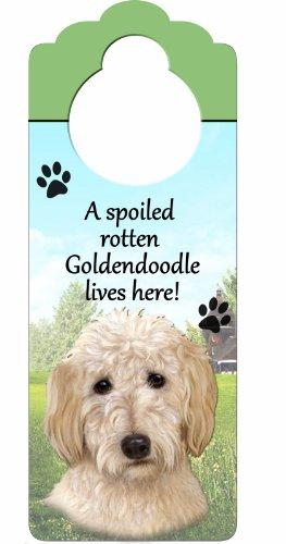 E&S Pets Goldendoodle Holzschild A Spoiled Rotten Goldendoodle Lives Here, mit künstlerischem Foto, 25,4 x 10,2 cm, kann an Türknöpfen oder überall im Haus aufgehängt Werden -