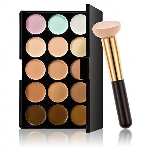 Rokekill Palette de maquillage professionnelle 15 couleurs Pinceaux pour le visage