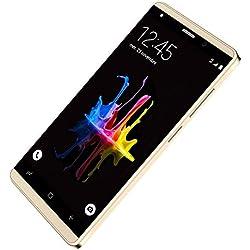Téléphones Portables Débloqués 16Go Smartphone Pas Cher 4G Android HD Double SIM Telephone Pportable 4G Pas Cher (Écran 5.0 Pouces - 16Go - Quad-Core - Batterie 2800mAh - Or)