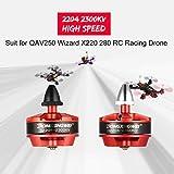 Funnyrunstore 2Pcs DX2204 2204 2300KV 2-3S CW / CCW Motor sin escobillas para QAV250 Wizard X220 280 RC FPV Drone Avión Helicóptero Multicopter (Color: Rojo)