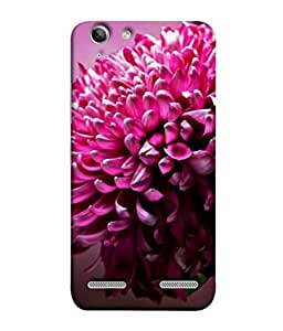 PrintVisa Mauve Flowers 3D Hard Polycarbonate Designer Back Case Cover for Lenovo Vibe K5 Plus :: Lenovo Vibe K5 Plus A6020a46 :: Lenovo Vibe K5 Plus Lemon 3