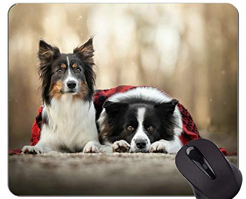 Mauspads, Gaming-Mauspad, Randcollie für Hunde - Genähte Kanten