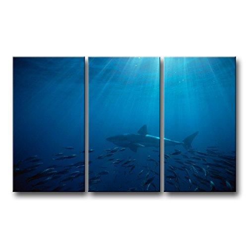 3Stück Blau Wand Kunst Malerei Great White Shark in Australien Blue Sea Prints auf Leinwand Das Bild Animal Bilder Öl für Home Moderne Dekoration Print Decor (Uniform Navy Blaue Arbeiten)