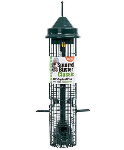 Jacobi Jayne SB-1057 Squirrel Proof Bird Feeder - Squirrel Buster - Marauders off! Guaranteed Squirrel and Large Bird… 1