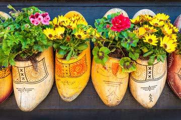 Holandés madera diseño zuecos dos diseño flores