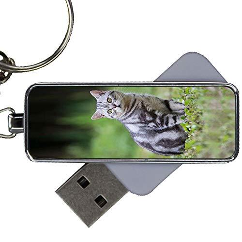 Per Usb Drive 8Gb Perfezionare Per Bambino Metallica Design Pet Cat