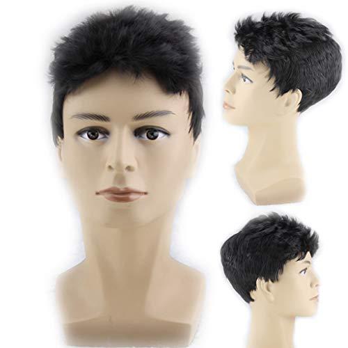 Herrenperücke, Flauschige hübsche Männliche Perücke kurzen Haares des Kopfes Zwei Kurze Haar 8cm ()