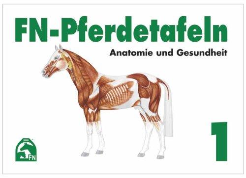 FN-Pferdetafeln Set 1: Anatomie und Gesundheit: Enthält Tafel 1 - 13: Fuer Pferde giftige Pflanzen - Lage erkennbarer Veraenderungen - Farben und ... Die Hufe - Der Kreislauf - Die Atmungsorgane