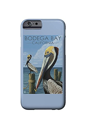 Bodega Bay, California - Brown Pellican (iPhone 6 Cell Phone Case, Slim Barely There)