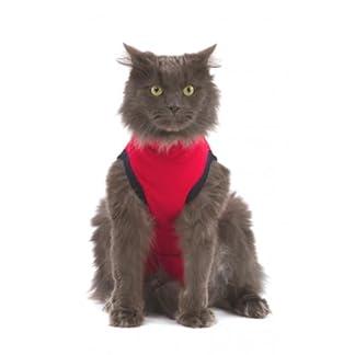 Medical Pet Shirt for Cats – Red, Size – Small 41JfkqLheeL