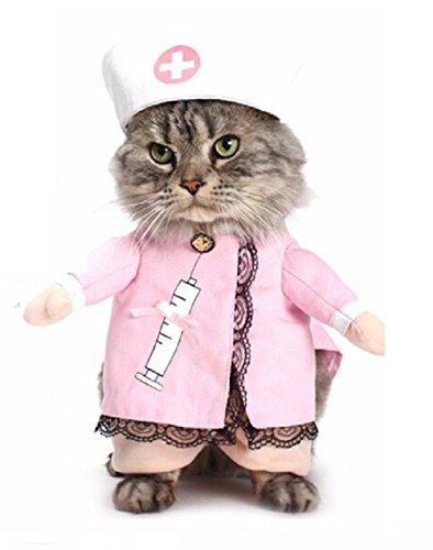 (Inception Pro Infinite Kostüm - Verkleidung - Krankenschwester - Arzt - Arzt - Katze (XL))