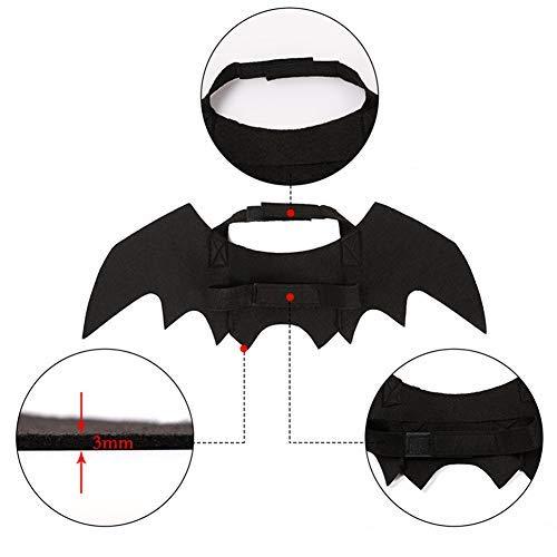 Dandeliondeme Halloween Pet Kostüm, Neue Haustier Hund Welpen Katze schwarz Cool Bat Flügel bilden Kostüme Kleidung Black