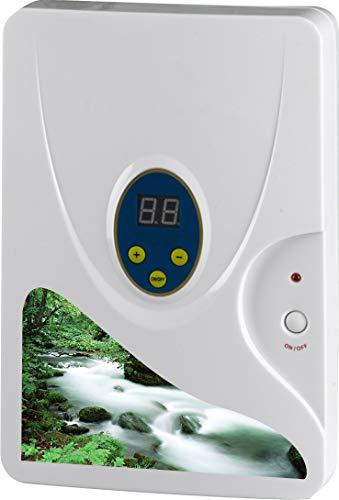 Libina Multifunktionale Sauerstoffhaltige Obst-und Gemüse Desinfektions Maschine, 400Mg/H Sterilisation Entodorierung Luftreiniger,Black