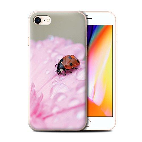 Stuff4 Hülle / Case für Apple iPhone 8 / Marienkäfer Fehler Muster / Englische Gärten Kollektion Marienkäfer Fehler