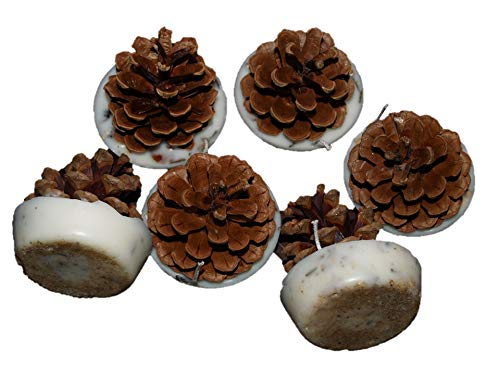 Kindlecone pin naturel-Allume-feu-Brume d'automne-Boîte de 12