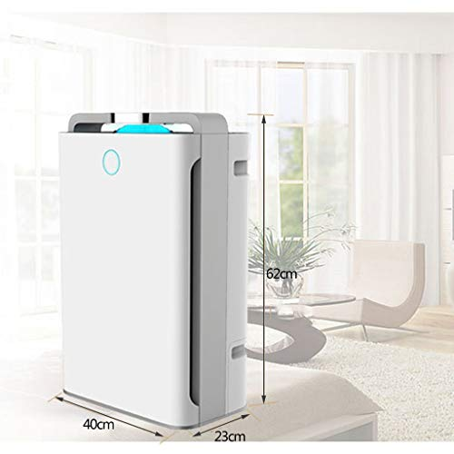 TLJX Large Home Air Purifier, Eliminates Allergens Relieve Asthma Hay Fever Allergy Desktop Air Cleaner for Bedroom