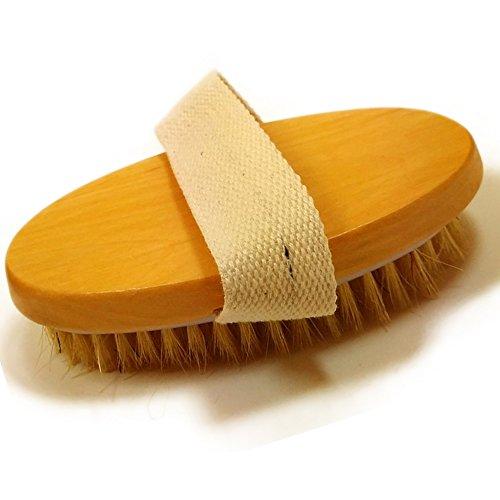 Scheda dettagliata Glamza Professional Dry Skin Body Brush with cactus setole naturali corpo spa bagno massaggiatore Firm scrub