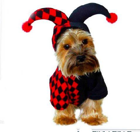 outflower Kleidung für Haustiere Clowns Hunde Halloween Weihnachten Kleidung Partyzubehör & #,; Code M & # (Animaux D'halloween Kostüm)