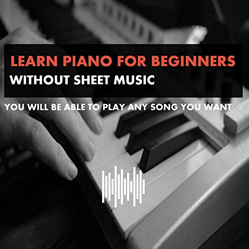 HOW TO MIX AND MASTER YOUR BEATS FOR BEGINNERS: Fruity loops , fl studio.... (English Edition)