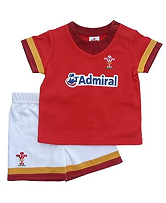 Wales WRU Rugby Baby T-Shirt & Shorts Set - 2016/17 Season from Wales WRU