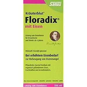 Floradix mit Eisen, 500 ml – Alternative zu Eisentabletten – Pflanzliches Spezial-Tonikum Schwangere & Kinder ab 6 – Eisenpräparat zur Vorbeugung von Eisenmangel