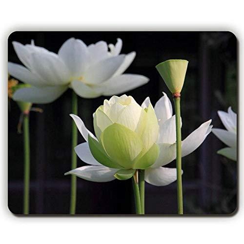 Mausunterlage der hohen Qualität, Lotus-Blumenblatt-Stämme, die, Spiel-Büro Mousepad verwischen