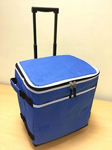 Borsa trolley cool termica per picnic campeggio festival borse della spesa c10