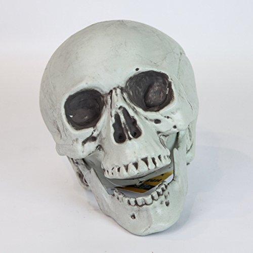 20cm hohe, schrecklich schöne Halloween Dekoration im Totenkopf Design, von Festive (Geisterbahn Halloween Für Die Dekoration)